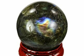"1.25"" Flashy, Polished Labradorite Sphere - Great Color Play For Sale, #105764"