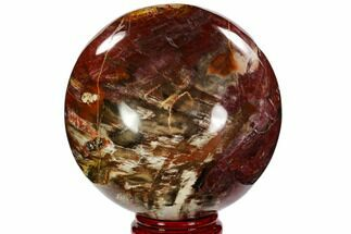"Buy 6.7"" Colorful Petrified Wood Sphere - Madagascar - #106003"