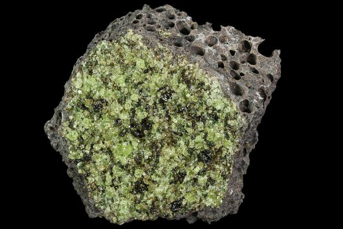 "2.6"" Peridot in Basalt - Arizona"