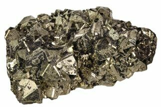 Pyrite - Fossils For Sale - #106848