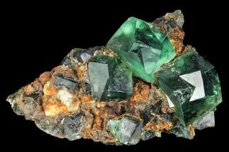 Fluorite  - Fossils For Sale - #106119