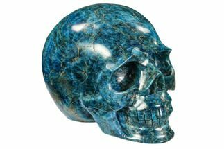 "4.9"" Polished, Bright Blue Apatite Skull - Madagascar For Sale, #107222"