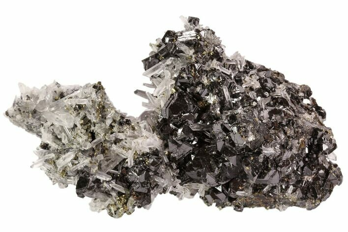 "4.8"" Pyrite, Sphalerite and Quartz Association - Peru"