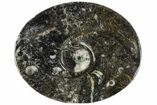 "Buy 4.7"" Oval Shaped Fossil Goniatite Dish - Morocco - #108001"