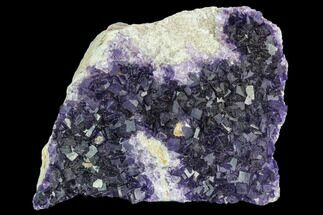 "3.3"" Purple Cubic Fluorite Crystal Cluster - Morocco For Sale, #108716"