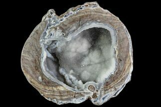 "5"" Crystal Filled Dugway Geode (Polished Half) For Sale, #109238"