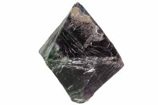 Fluorite - Fossils For Sale - #110064