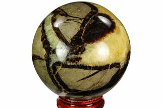 "2.3"" Polished Septarian Sphere - Madagascar For Sale, #110660"