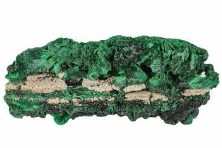"3.2"" Silky Fibrous Malachite Cluster - Congo For Sale, #110495"