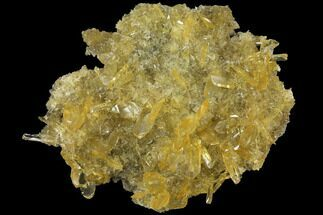 "Buy 4.2"" Selenite Crystal Cluster (Fluorescent) - Peru - #108619"