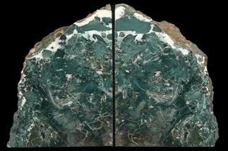 "6.7"" Green, Jasper Replaced Petrified Wood Bookends - Oregon For Sale, #111092"