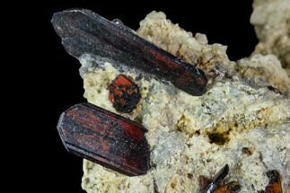 Brookite & Quartz - Fossils For Sale - #111336