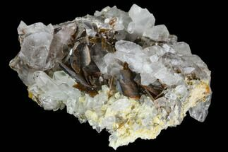 Brookite and Quartz - Fossils For Sale - #111345