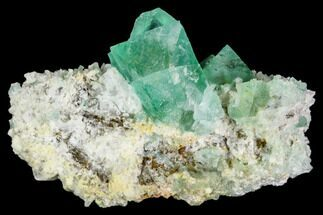 Fluorite  - Fossils For Sale - #111567