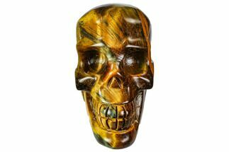 "Buy 2.35"" Polished Tiger's Eye Skull - Crystal Skull - #111805"