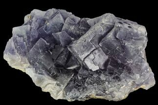 Fluorite  - Fossils For Sale - #112092