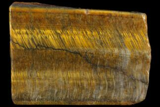 "2.2"" Polished Tiger's Eye Slab - South Africa For Sale, #112316"