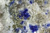 "4.4"" Lazurite, Pyrite and Muscovite in Marble Matrix - Afghanistan - #111795-2"