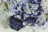 "3.3"" Lazurite and Pyrite in Marble Matrix - Afghanistan - #111797-1"