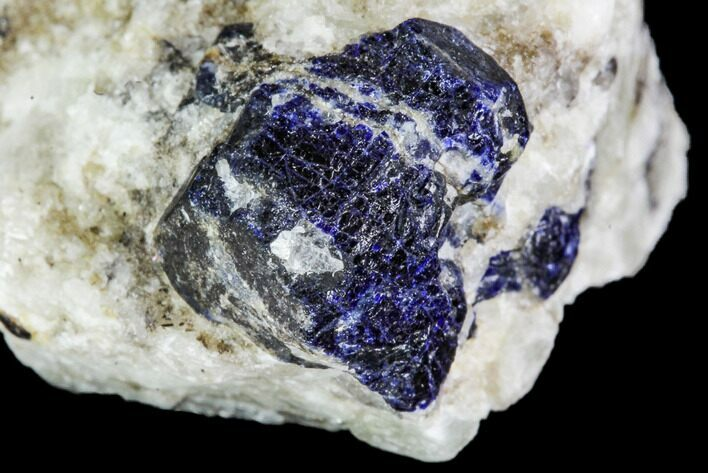 "1.3"" Lazurite Crystal in Marble Matrix - Afghanistan"
