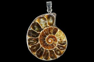 "1.5"" Fossil Ammonite Pendant - 110 Million Years Old For Sale, #112460"