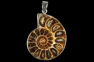 "1.4"" Fossil Ammonite Pendant - 110 Million Years Old For Sale, #112439"