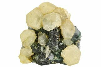 Fluorite & Calcite - Fossils For Sale - #112422