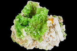 Pyromorphite - Fossils For Sale - #112209