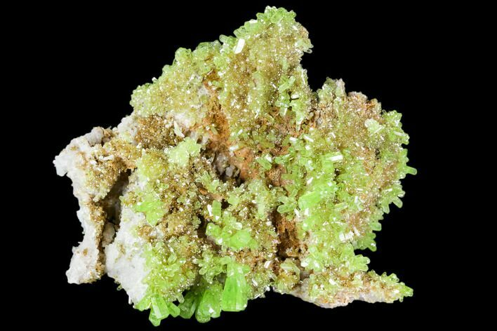"1.6"" Vibrant Green Pyromorphite Crystal Cluster - China"