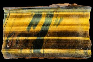 "Buy 4.0"" Polished Tiger's Eye Slab - South Africa - #112993"