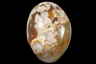 Quartz var. Agate & Chalcedony - Fossils For Sale - #113640