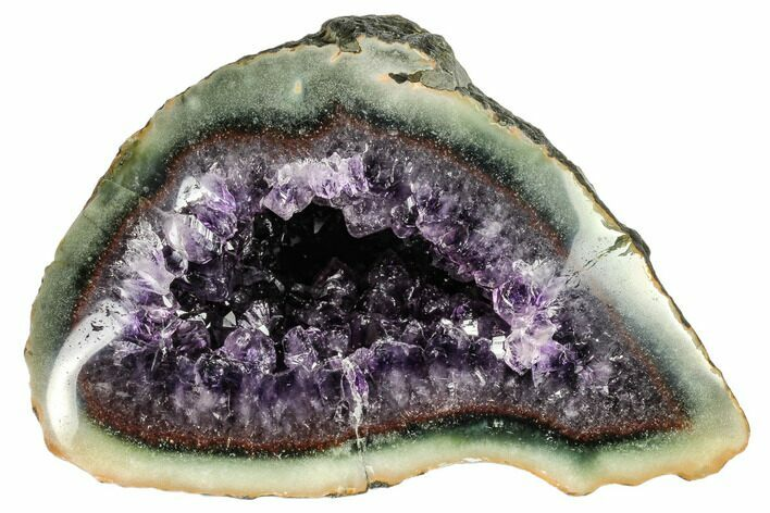 "7.3"" Purple Amethyst Geode with Polished Face - Uruguay"