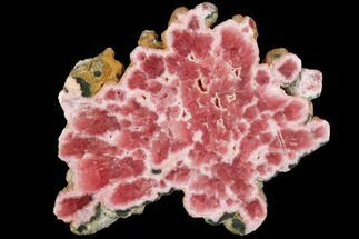 Rhodochrosite  - Fossils For Sale - #114237