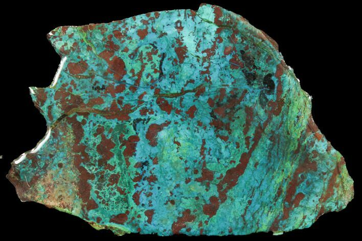 "6.8"" Chrysocolla & Malachite Slab - Bagdad Mine, Arizona"
