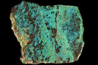 "Buy 6.7"" Chrysocolla & Malachite Slab - Bagdad Mine, Arizona - #114262"