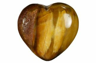 "1.6"" Polished, Triassic Petrified Wood Heart - Madagascar For Sale, #115520"