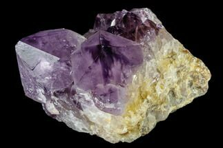 "Buy 3.8"" Wide, Amethyst Crystal Cluster - South Africa - #115387"