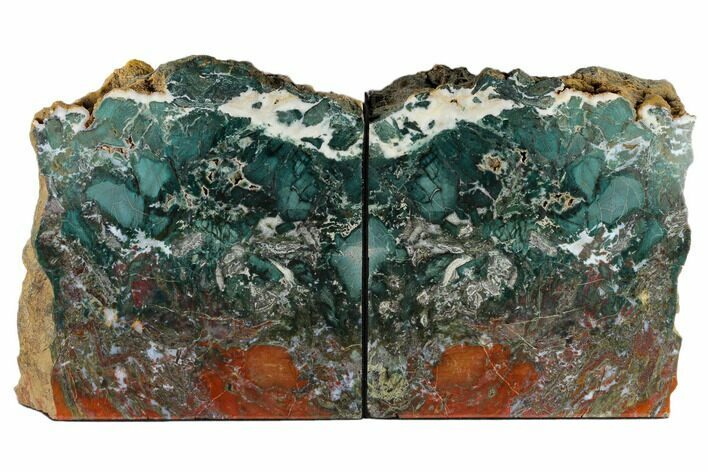 "7.9"" Green & Red Jasper Replaced Petrified Wood Bookends - Oregon"