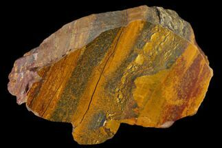 "Buy 4.5"" Marra Mamba Tigers Eye - Mt. Brockman (2.7 Billion Years) - #117193"
