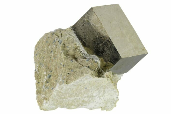 "1.26"" Pyrite Cube In Rock - Navajun, Spain"