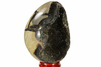 "Buy 3.3"" Septarian ""Dragon Egg"" Geode - Black Crystals - #118705"