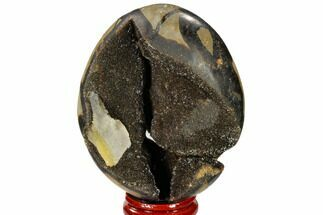 "Buy 3.1"" Septarian ""Dragon Egg"" Geode - Black Crystals - #118732"