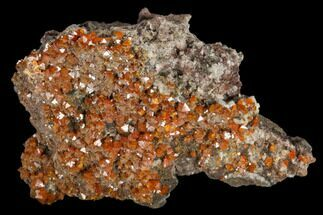 "1.5"" Red-Orange Bipyramidal Wulfenite Crystals - Melissa Mine, Arizona For Sale, #118991"