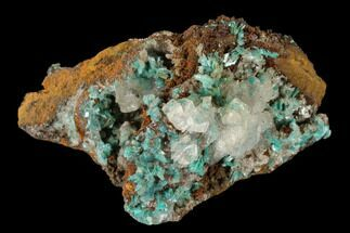 "Buy 2"" Calcite & Fibrous Aurichalcite Crystal Association - Mexico - #119191"