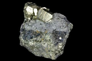 "2.3"" Pyrite Crystals on Galena - Peru For Sale, #120119"