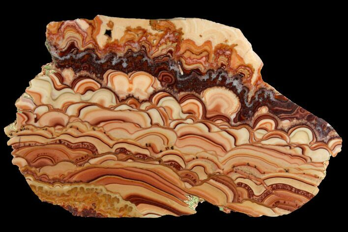 "7.1"" Polished Slab Of Rolling Hills Dolomite - Mexico"