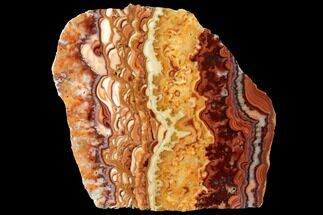 "4.4"" Polished Slab Of Rolling Hills Dolomite - Mexico For Sale, #120110"