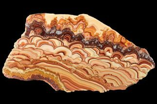 "Buy 8.4"" Polished Slab Of Rolling Hills Dolomite - Mexico - #120112"