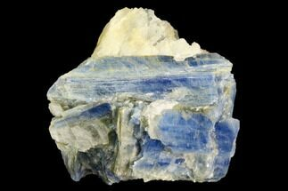 "Buy 2.5"" Vibrant Blue Kyanite Crystals In Quartz - Brazil - #118843"