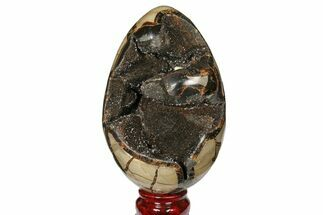 Septarian with Calcite  - Fossils For Sale - #120885